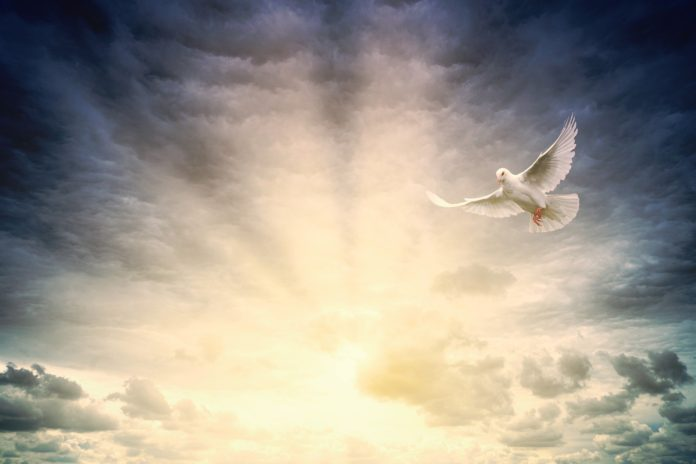 Sellados por el Espíritu Santo