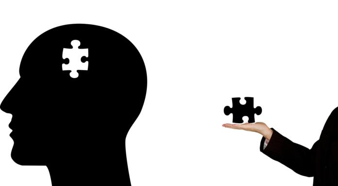Las cinco entradas del cerebro