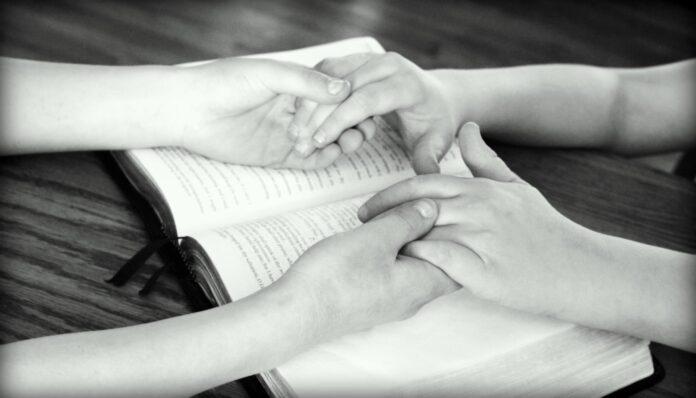 La santidad no es una opción